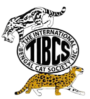 The International Bengal Cat Society