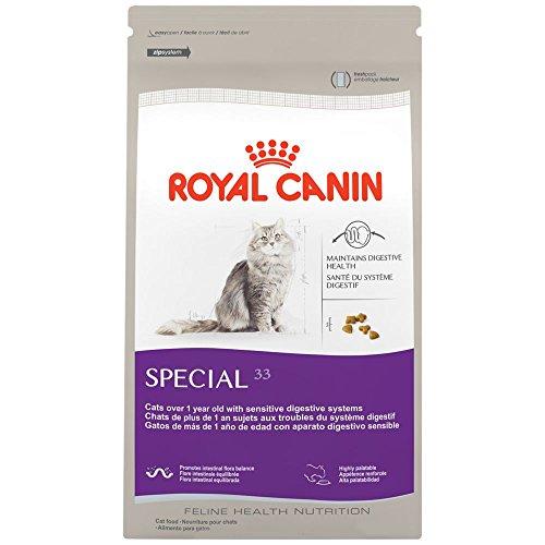 royal canin dry cat food special 33 formula 15 pound bag kotykatz bengals. Black Bedroom Furniture Sets. Home Design Ideas