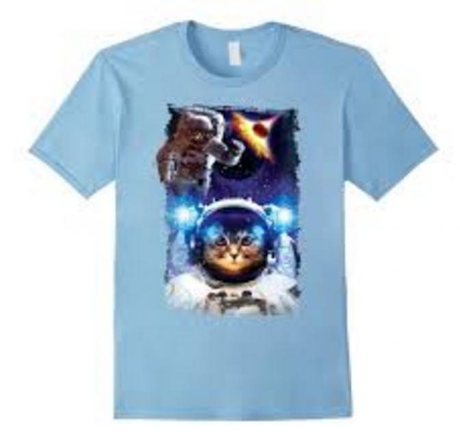 Astronaut Kitty