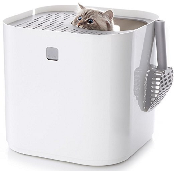 Bengal Cat Litter Box