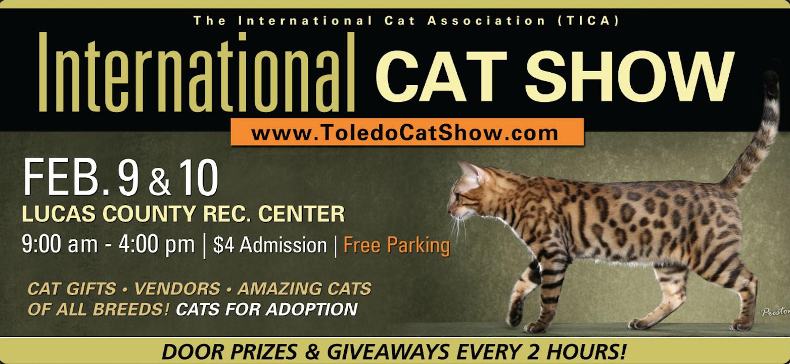 2019 Toledo Cat Show
